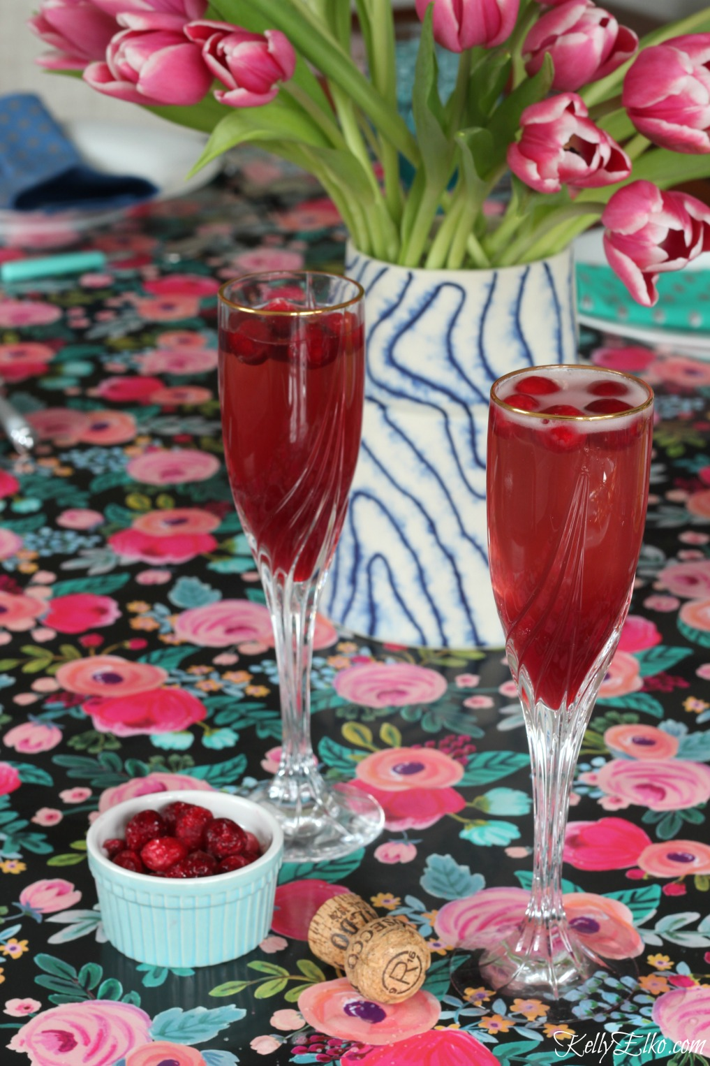 Cranberry Fizz Cocktail Recipe: It's 5 O'Clock Somewhere