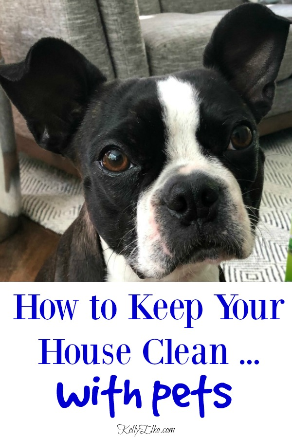 How to have a clean house with pets! Keep your house spotless (and smelling great) with these tips and tricks for keeping a clean house even when you have dogs and cats! kellyelko.com #cleaningtips #cleanhouse #clean