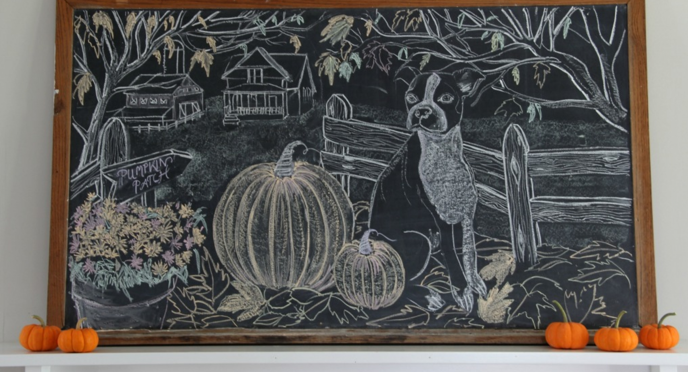 giant-fall-chalkboard-art-boston-terrier