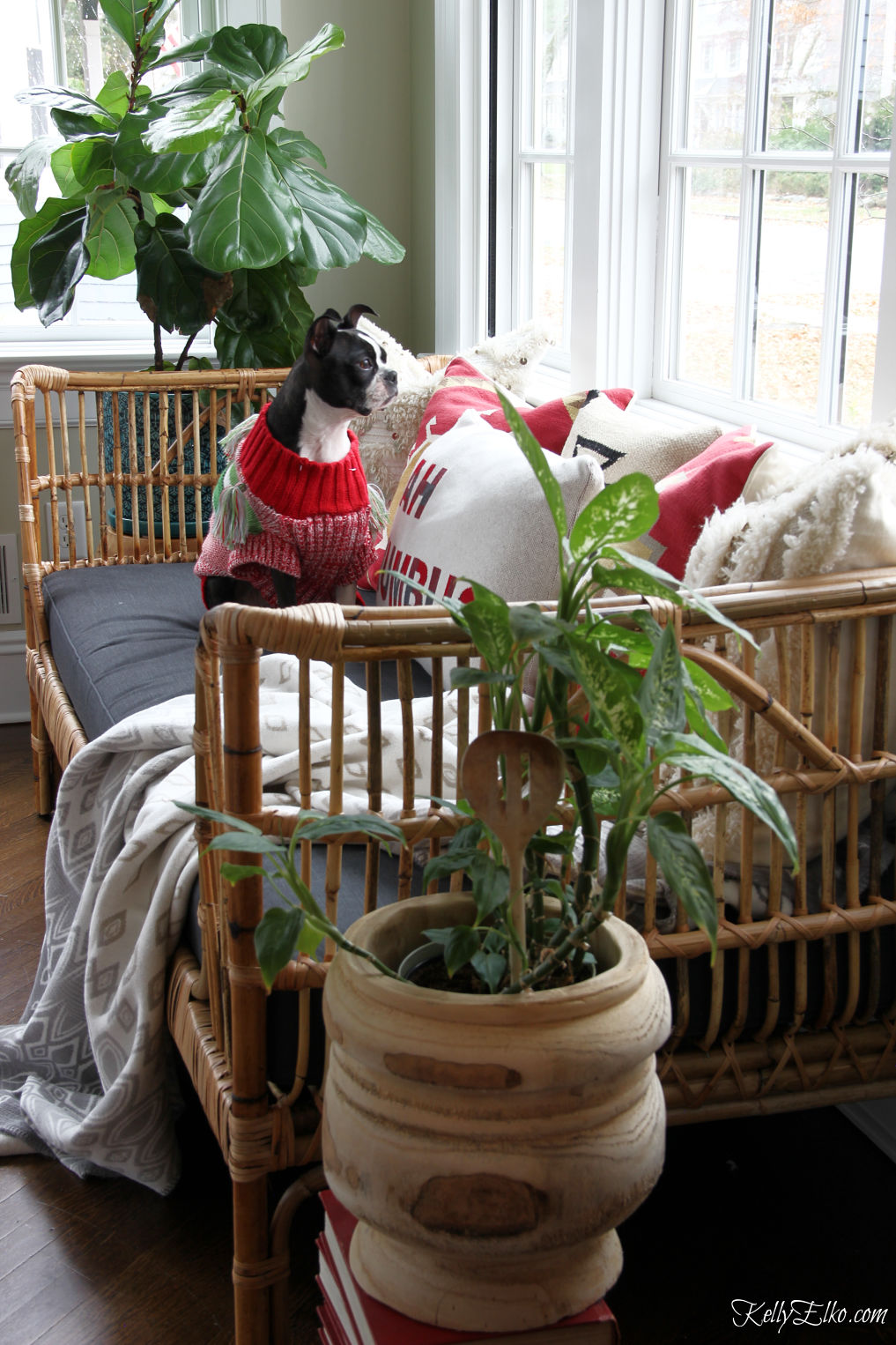 Love this boho rattan daybed filled with colorful pillows and plants kellyelko.com #sunroom #sunroomdecor #houseplants #interiordecorate #interiordecor #bohodecor #boho #eclecticdecor #sunroom