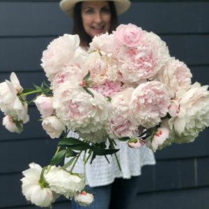 Fun Peony Facts kellyelko.com #peonies #peony #perennials #gardening #gardeningtips