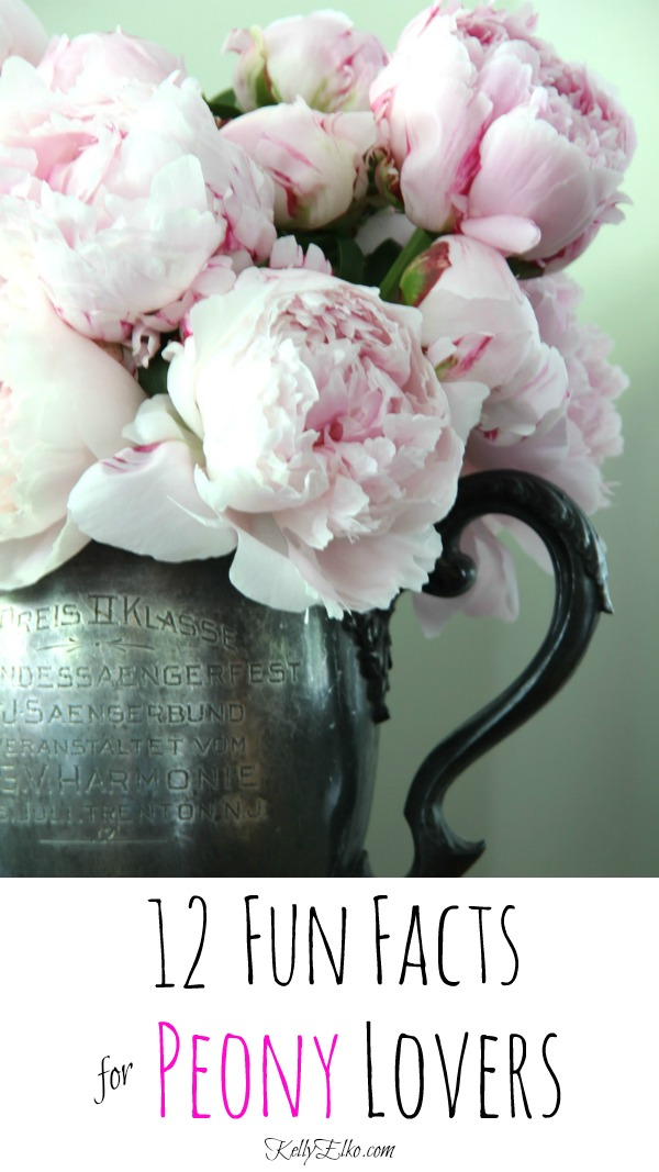 12 Fun Peony Facts that every peony lover needs to know! kellyelko.com #peonies #peony #perennials #flowers #blooms #gardening #gardeners #gardeningtips