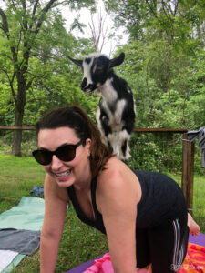 52 Weeks of Yes Week Three - goat yoga! kellyelko.com #52weeksofyes #goatyoga #yoga