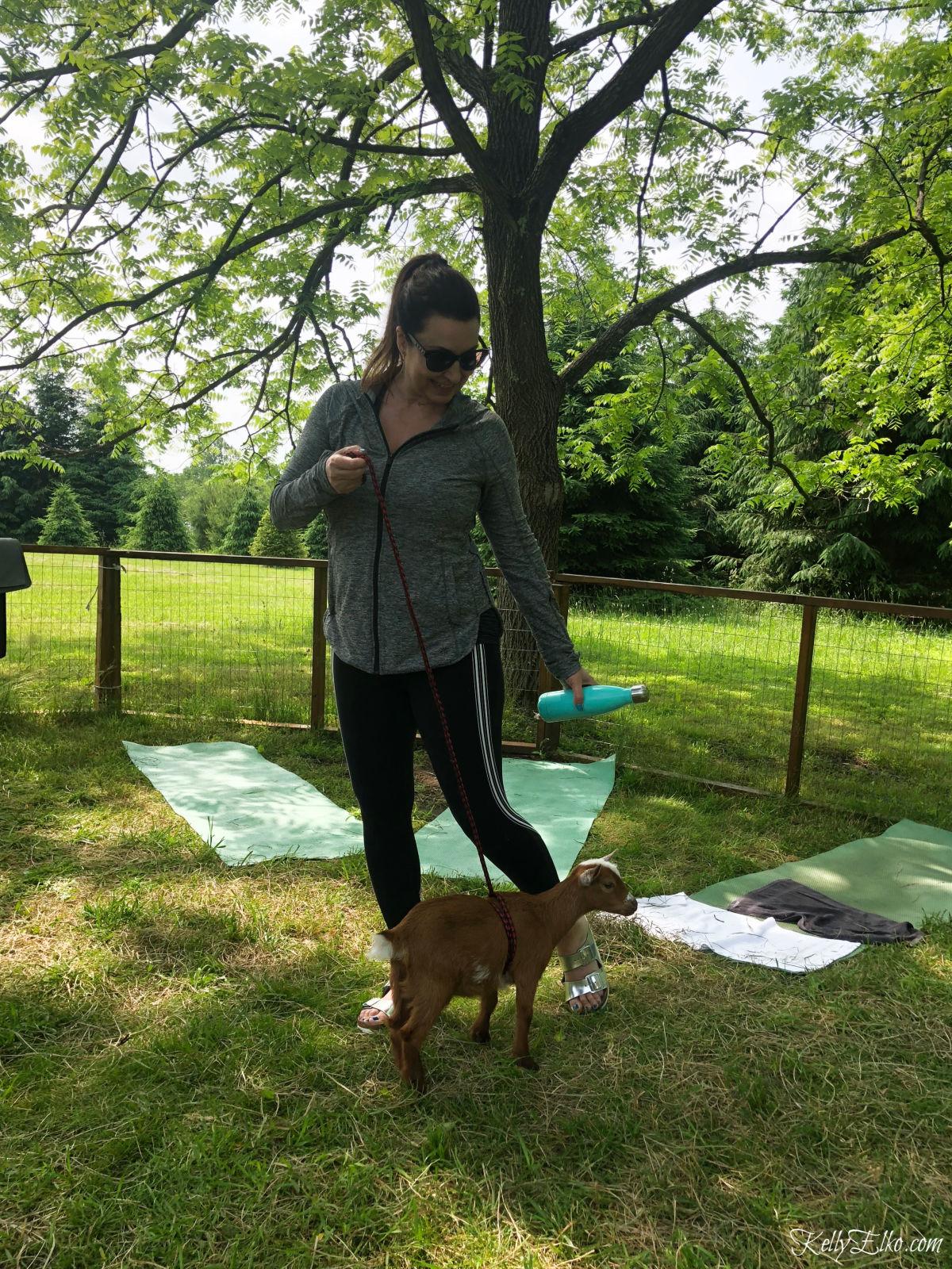 Goat yoga is such a fun experience! kellyelko.com #goatyoga #yoga #goats #pygmygoats #52weeksofyes