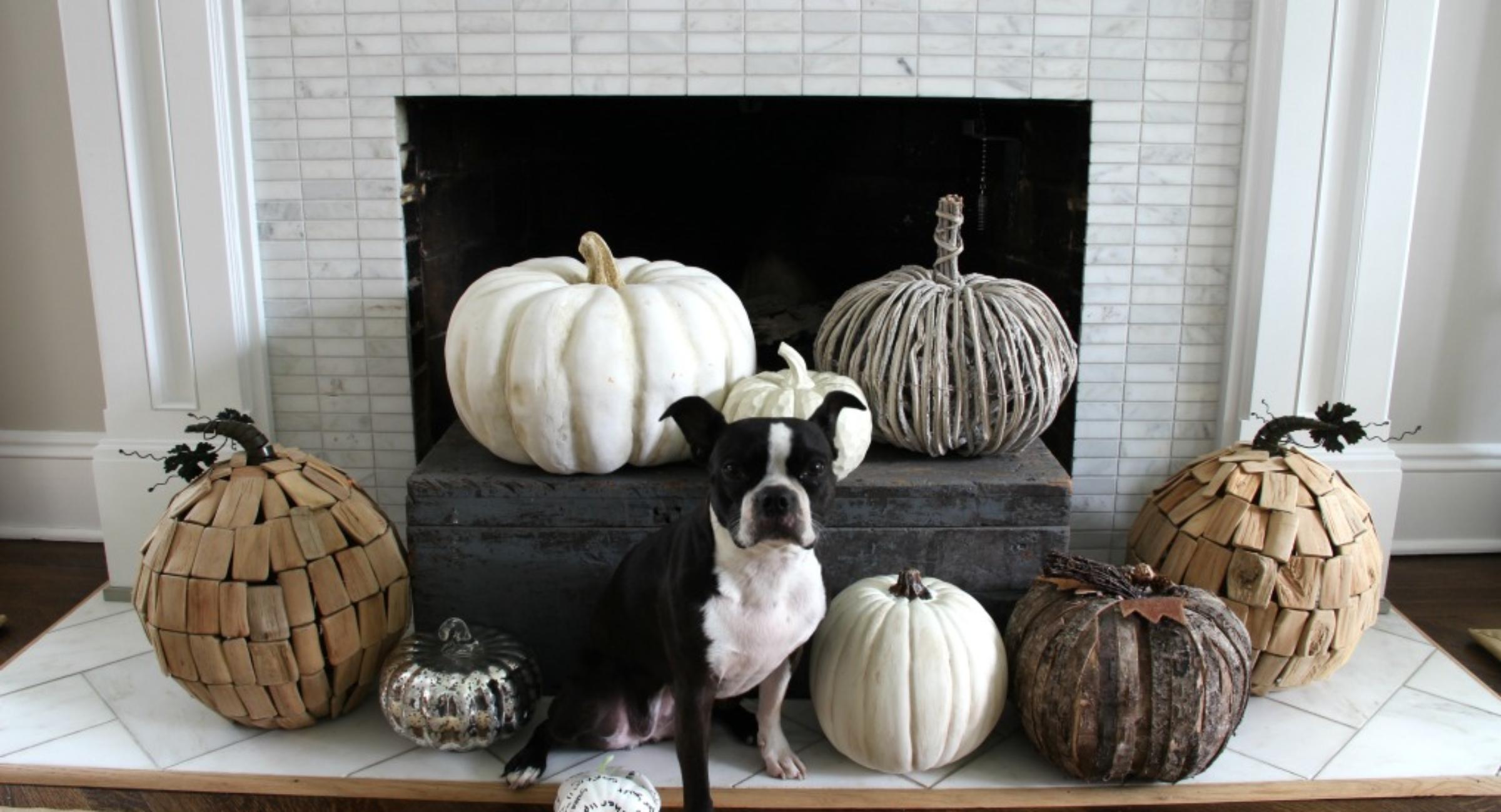 pumpkin-decor-fall-mantel-hearth-dog