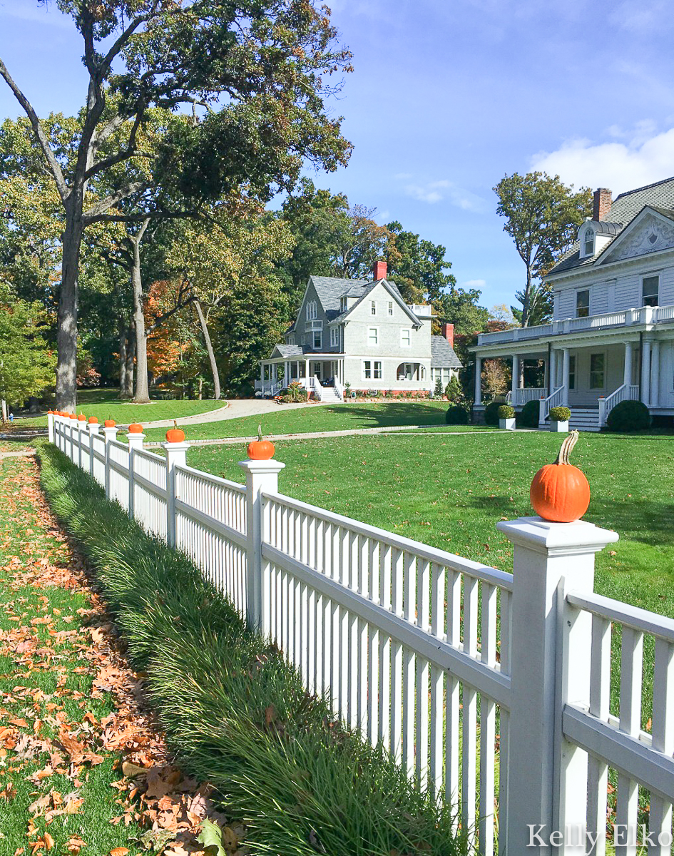 Extra! Extra - love this pumpkin picket fence for fall kellyelko.com