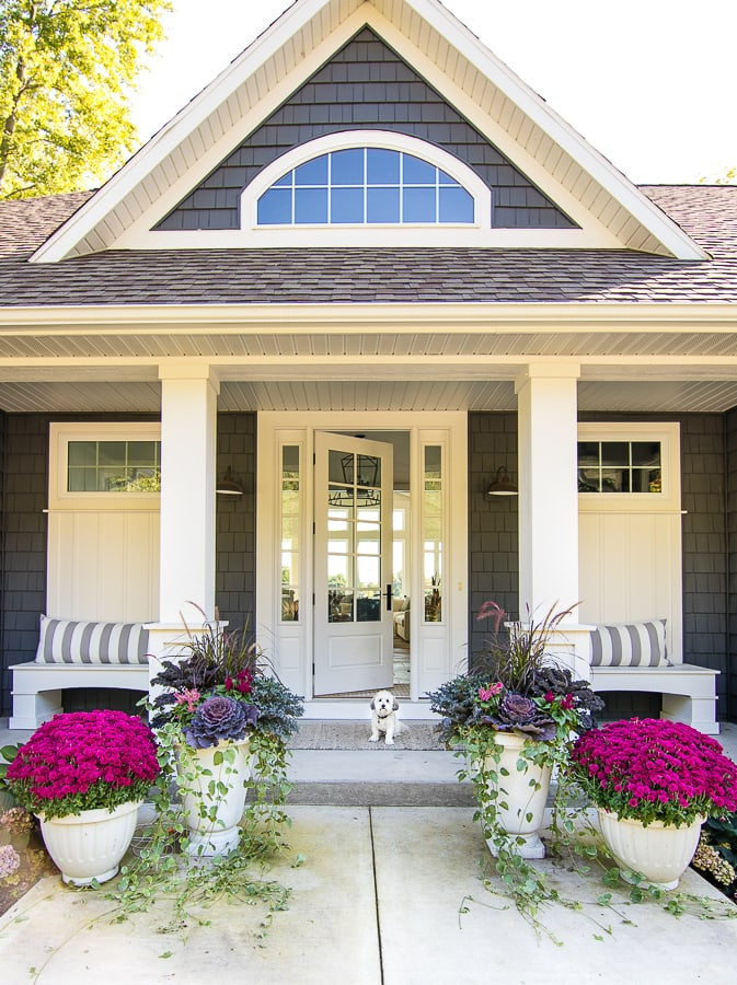 10 Beautiful Fall Porches - love the purple mums and kale planters kellyelko.com #fall #fallporch #falldecor #falldecorating #mums #curbappeal #autummdecor #autummporch