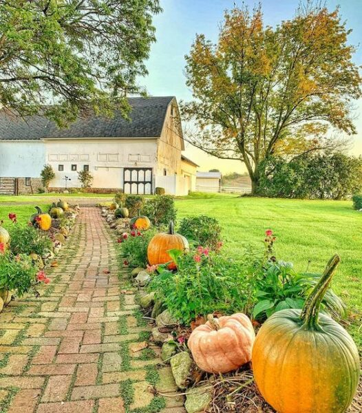 Fall on the farm kellyelko.com #farm #barn #farmhouse #fall #pumpkins