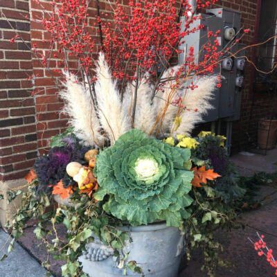 Beautiful Winter Planter of pampas grass, winter red berries, purple and green kale and trailing ivy kellyelko.com #planters #christmasplanter #winterplanter #fallplanter #gardening #gardeners #containergardens #containergardening #wintergardens #fallgardens #pampasgrass #kellyelko Kelly's Stamp of Approval 6