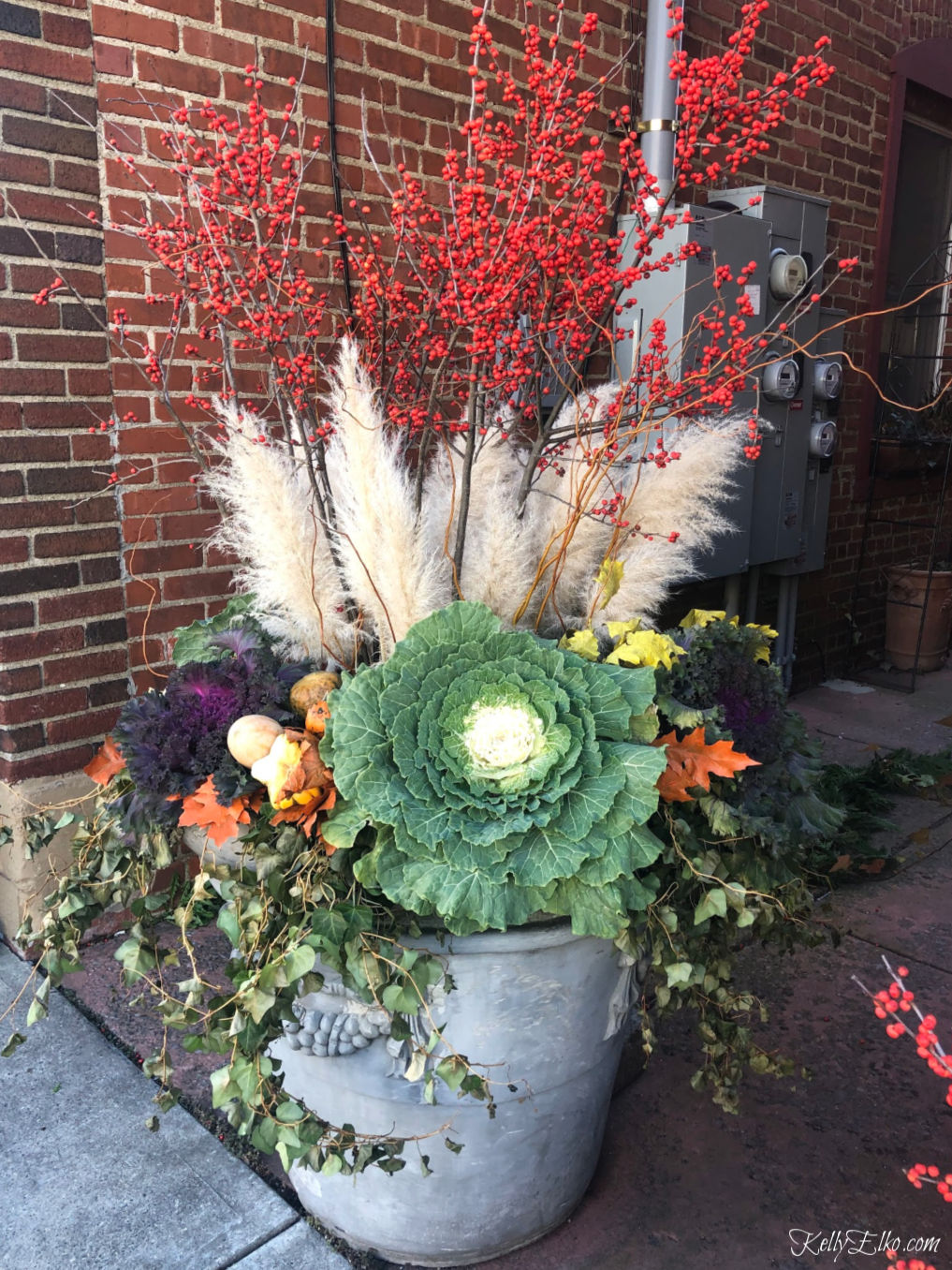 Beautiful Winter Planter of pampas grass, winter red berries, purple and green kale and trailing ivy kellyelko.com #planters #christmasplanter #winterplanter #fallplanter #gardening #gardeners #containergardens #containergardening #wintergardens #fallgardens #pampasgrass #kellyelko