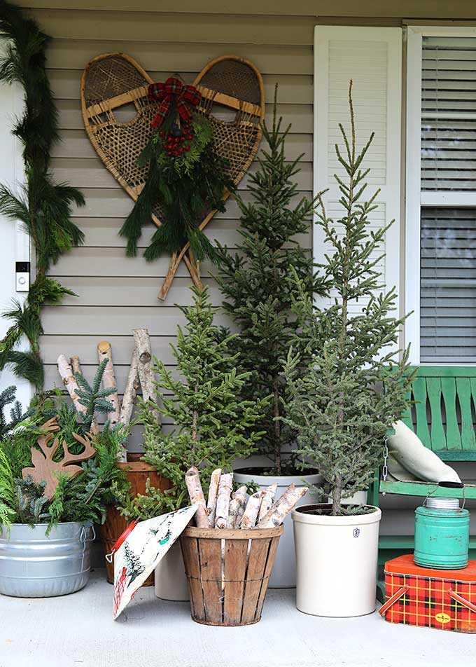 Beautiful winter porch with old snow shoes and Christmas trees #porch #winterporch #christmsporch #vintagechristmas #porchdecor #christmastrees #vintagedecor