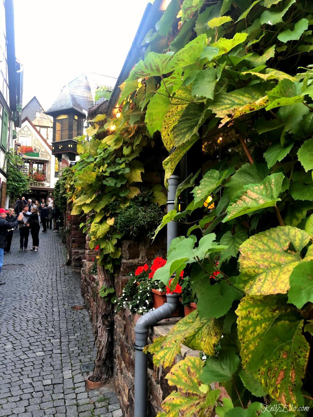 The charming Rhine river village of Rudesheim Germany has beautiful vine covered buildings kellyelko.com #Rudesheim #germany #rivercruise #rhineriver #travel #travelblog #travelblogger #vacation #europe #europevacation