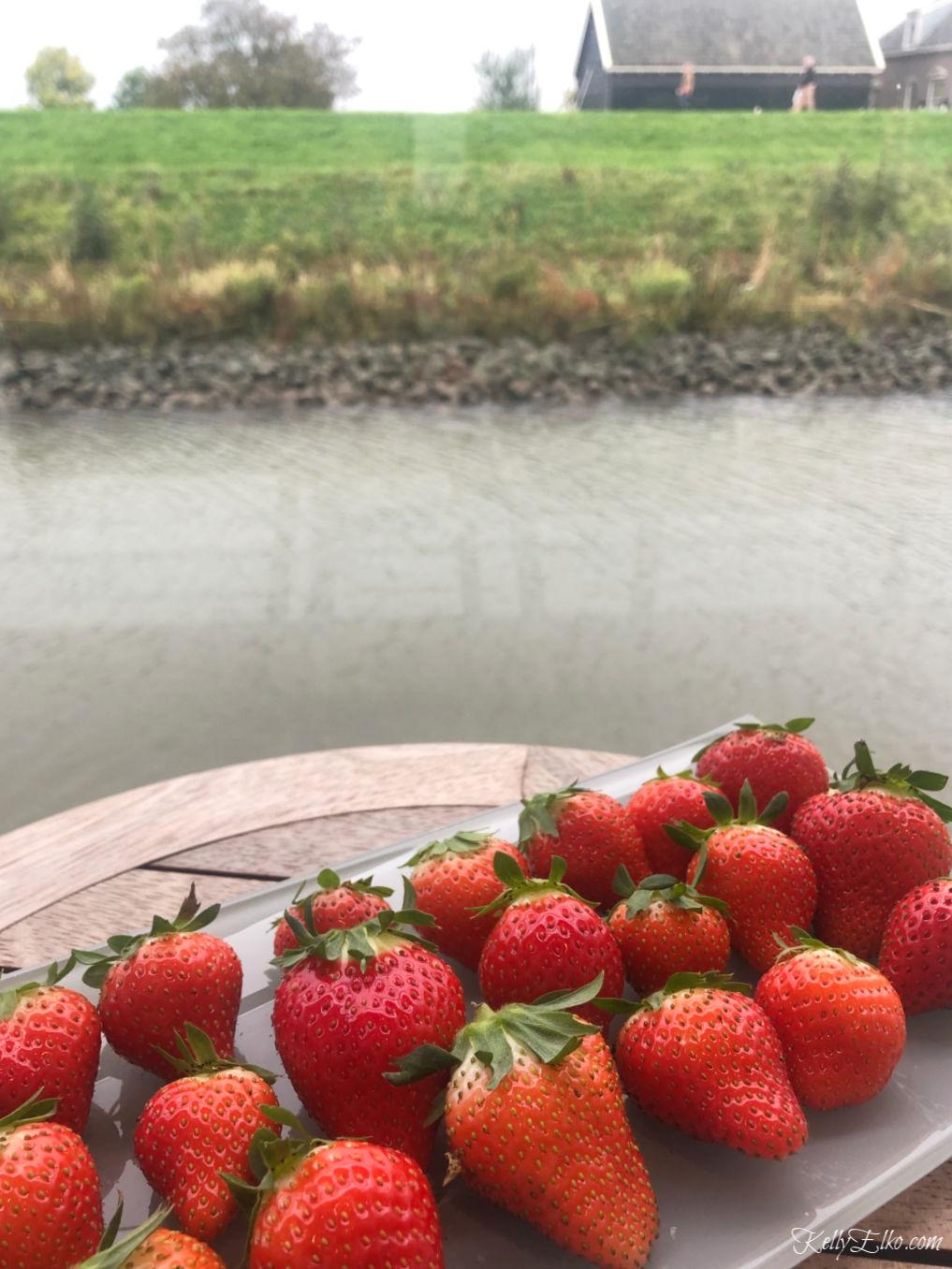 Fresh strawberries on a river cruise kellyelko.com