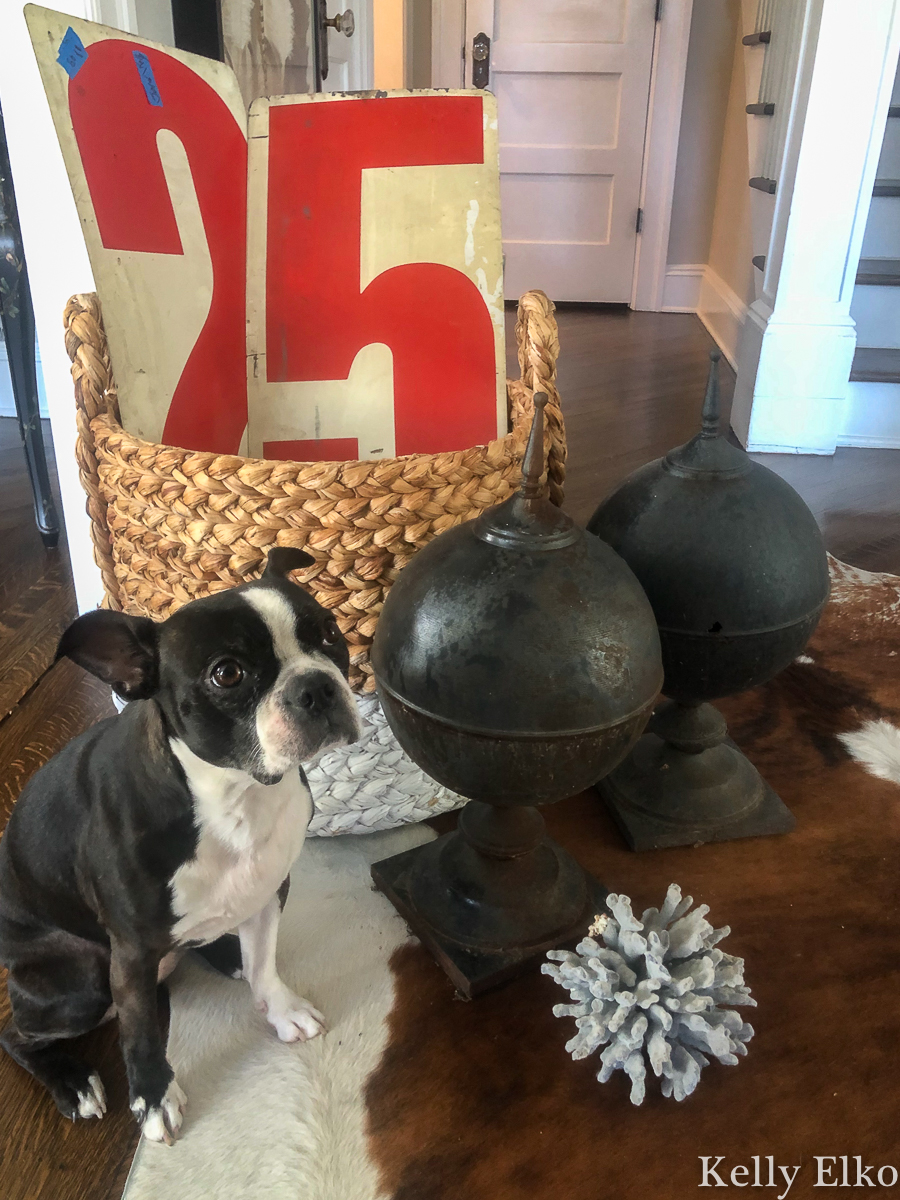 Estate sale finds - love the vintage red numbers, black finials and big chunk of blue coral. She always finds the best stuff kellyelko.com #farmhousedecor #farmhousestyle #farmhousedecor #farmhousestyle #estatesale #thrifting #thrifty #yardsale #garagesale #vintagenumbers #coral #finials #bostonterrier