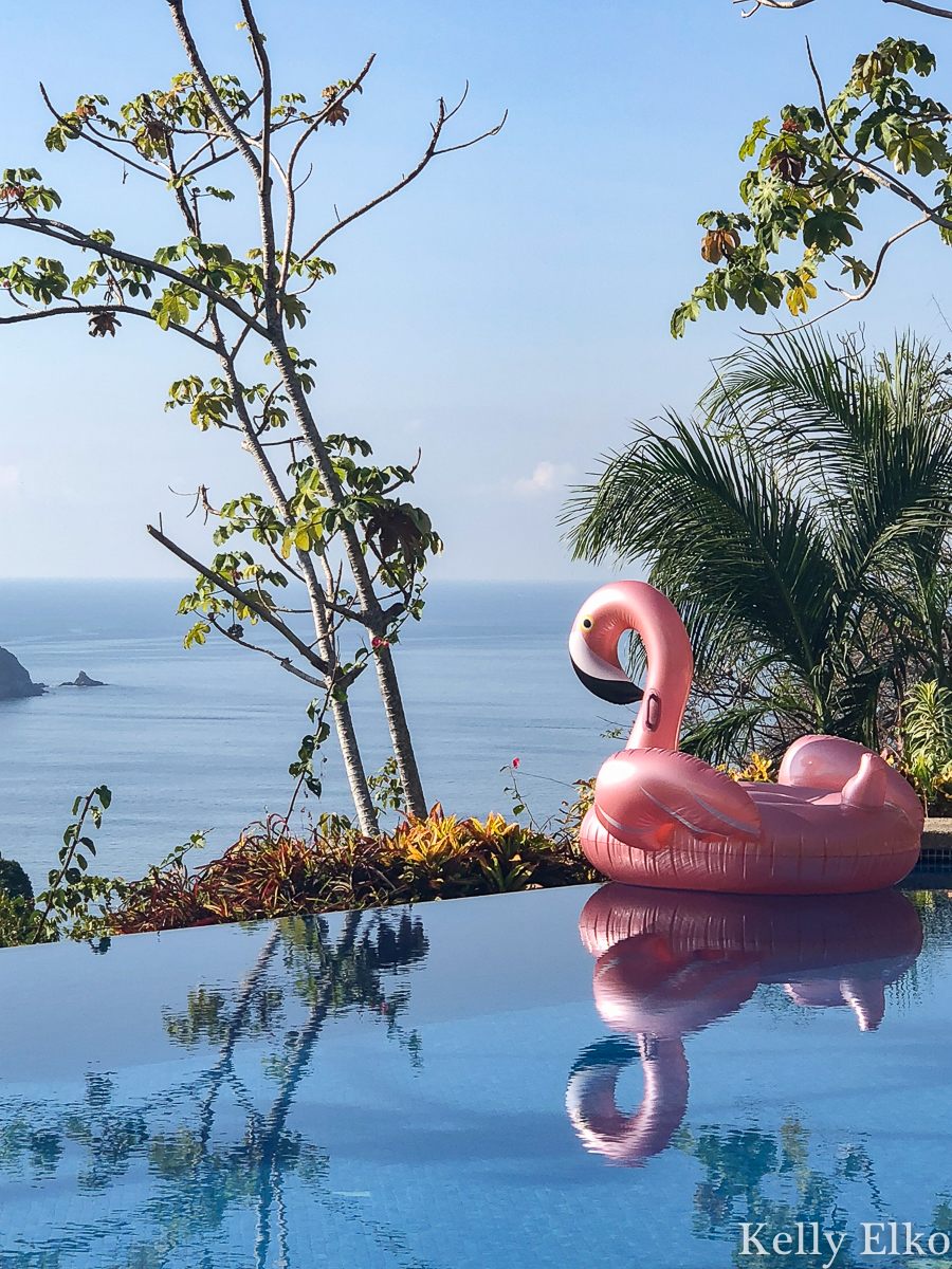 Costa Rica Vacation - this villa near Manual Antonio National Park has an infinity edge pool and tons of monkeys and sloths on the property kellyelko.com #costarica #quepos #manualantonio #vacation #pinkflamingo #pool #infinitypool #poolfloat #beachview
