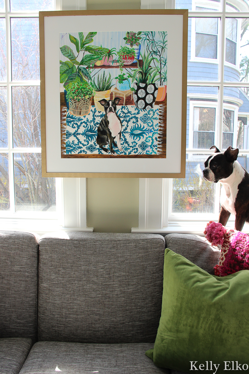 Love this custom colorful pet painting with tips on how to hang art on windows kellyelko.com #petart #dogart #dogpainting #petportrait #plantlady #plants #sunroom #sunroomdecor #bostonterrier