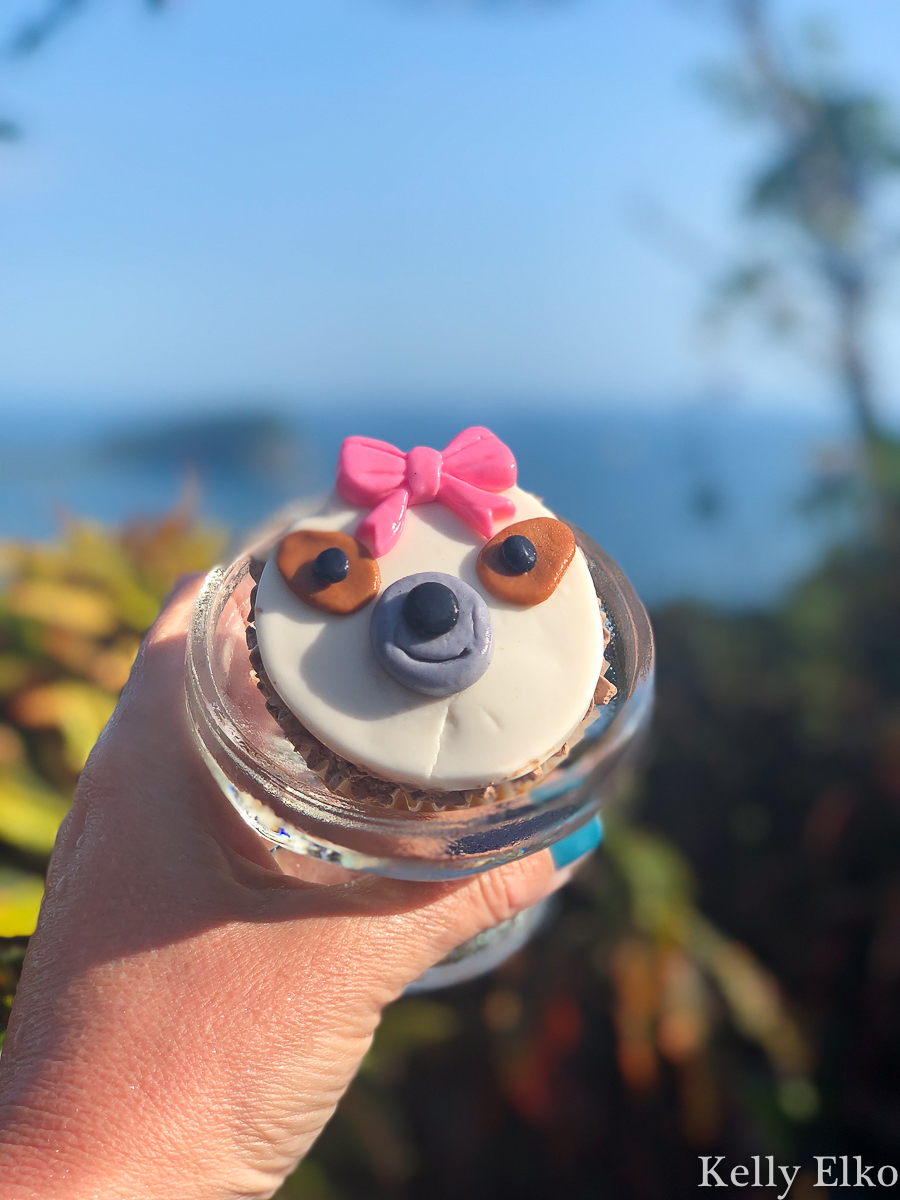 This villa in Costa Rica planned a sloth themed birthday party and it was epic! kellyelko.com #costarica #sloths #birthdayparty #vacation #travel #travelblog #travelblogger #girlstrip #birthdaytrip #cupcake