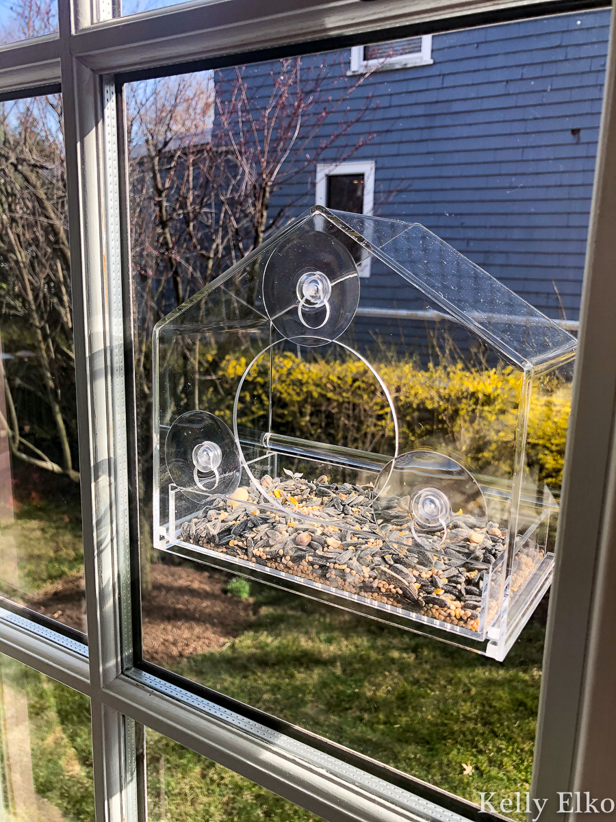 Unique Must Haves for HomeBodies - love this window bird feeder so you can get an up close look at your feathered friends kellyelko.com #birdwatching #birding #birds #giftguide #giftideas #homebodies #birdhouse