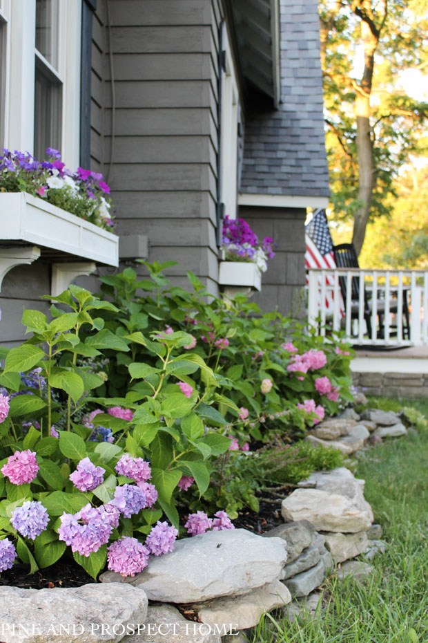 Hydrangeas and window boxes add curb appeal to this charming 1930's cottage #cottage #curbappeal #hydrangeas #perennials #windowbox #landscaping #gardening #gardener
