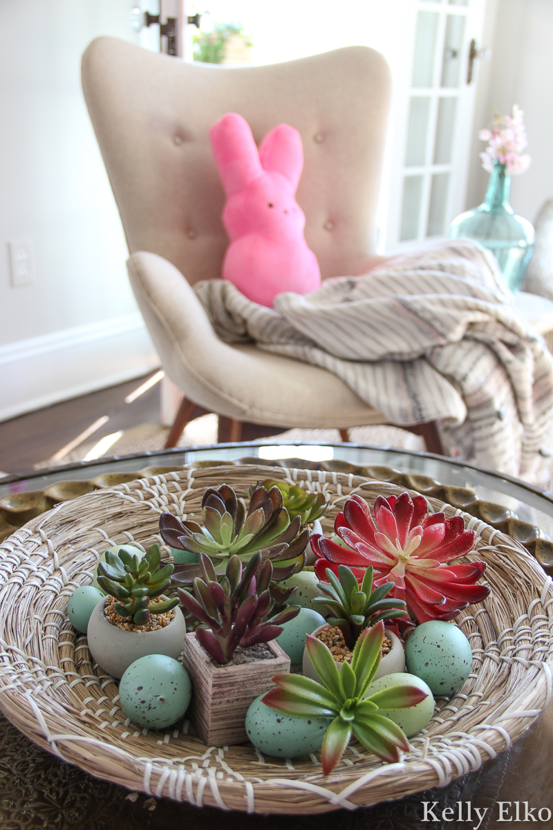 Succulents are a fun way to add color for any season like this spring decor with eggs kellyelko.com #spring #springdecor #peeps #easterdecor #eastereggs #bohodecor #succulents #plantlady #kellyelko