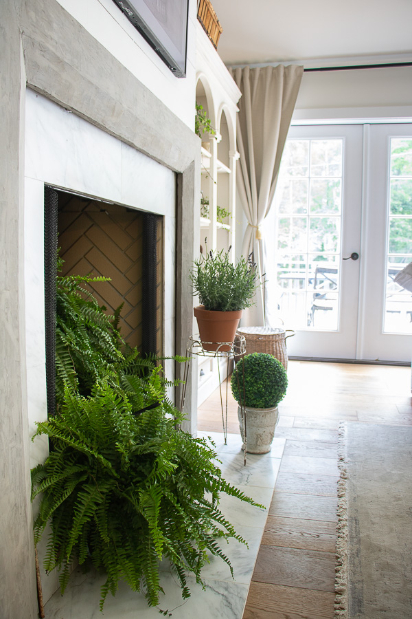 Fill a fireplace with plants during warm weather months #plants #houseplants #plantlady #ferns #farmhouse #mantel #fireplacedecor #farmhousedecor