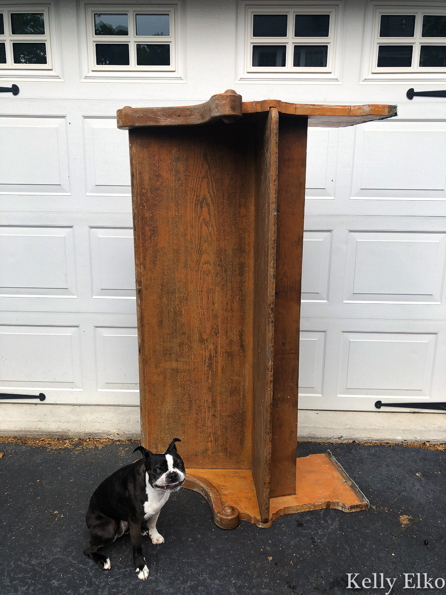 She bought this antique church pew before she realized a swarm of carpenter bees were nesting in it! kellyelko.com #churchpew #vintage #vintagedecor #antique #antiquedecor #farmhouse #farmhousedecor #carpenterbees #bees #sunroomdecor #plants #houseplants #plantlady #gardening #gardens #bostonterrier