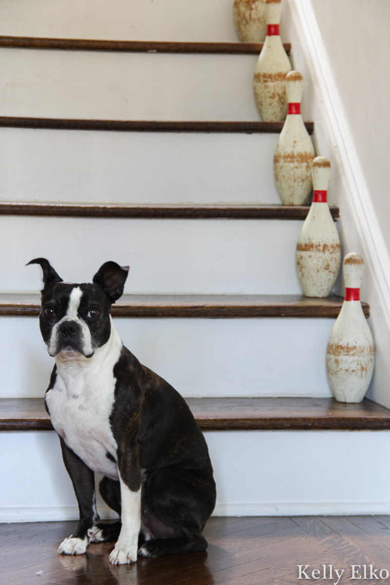 Vintage bowling pins on the staircase kellyelko.com #vintage #vintagedecor #farmhousedecor #farmhousestyle #farmhouse #stairs #staircase #thrifted #bostonterrier