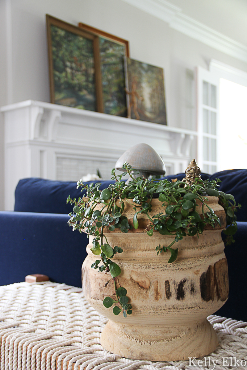 Love this trailing succulent in big wood planter kellyelko.com #plants #houseplants #succulents #falldecor #plantlady