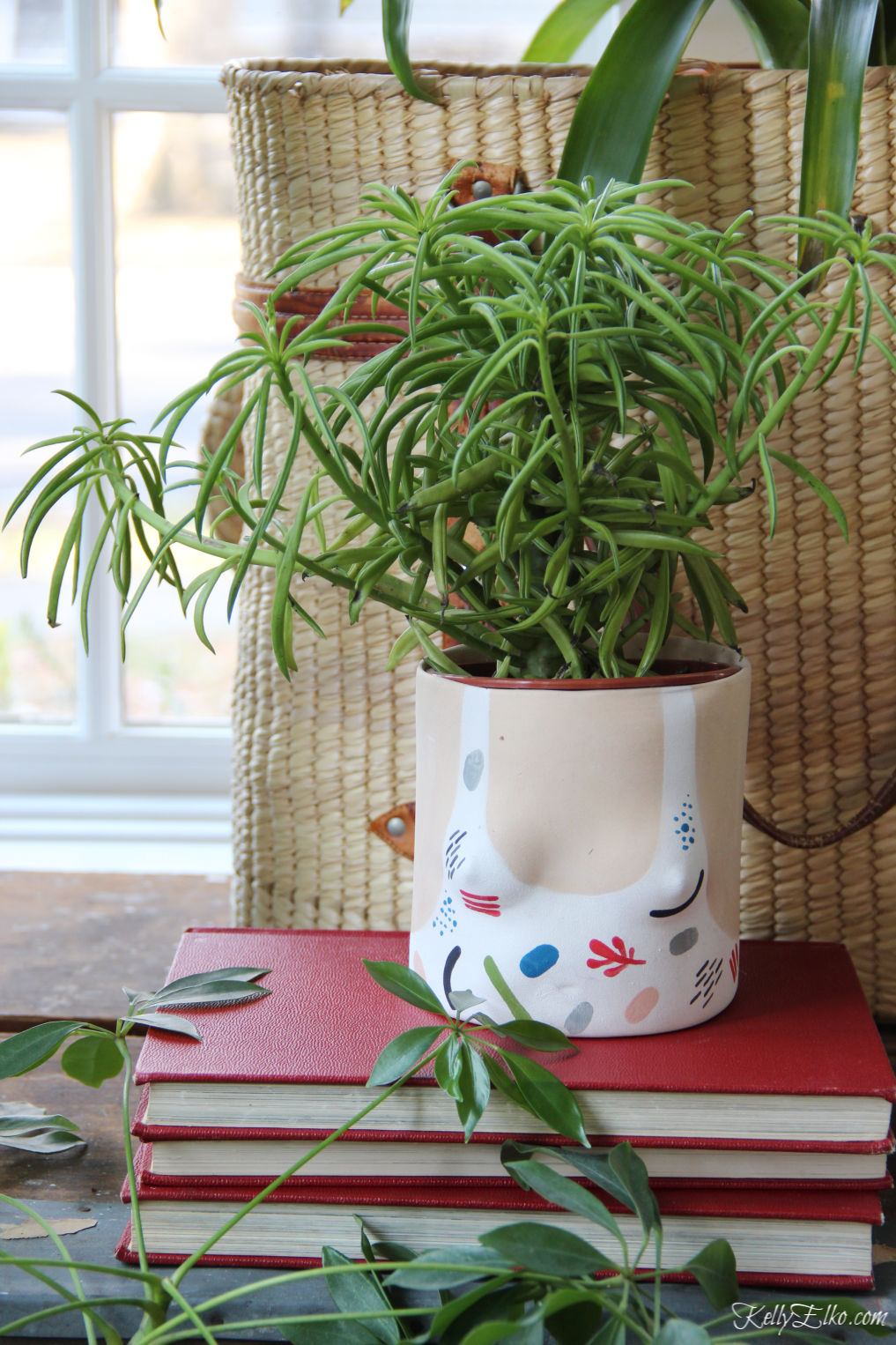This bathing suit planter is so cute kellyelko.com #plants #planters #houseplants #jungalow #eclecticdecor