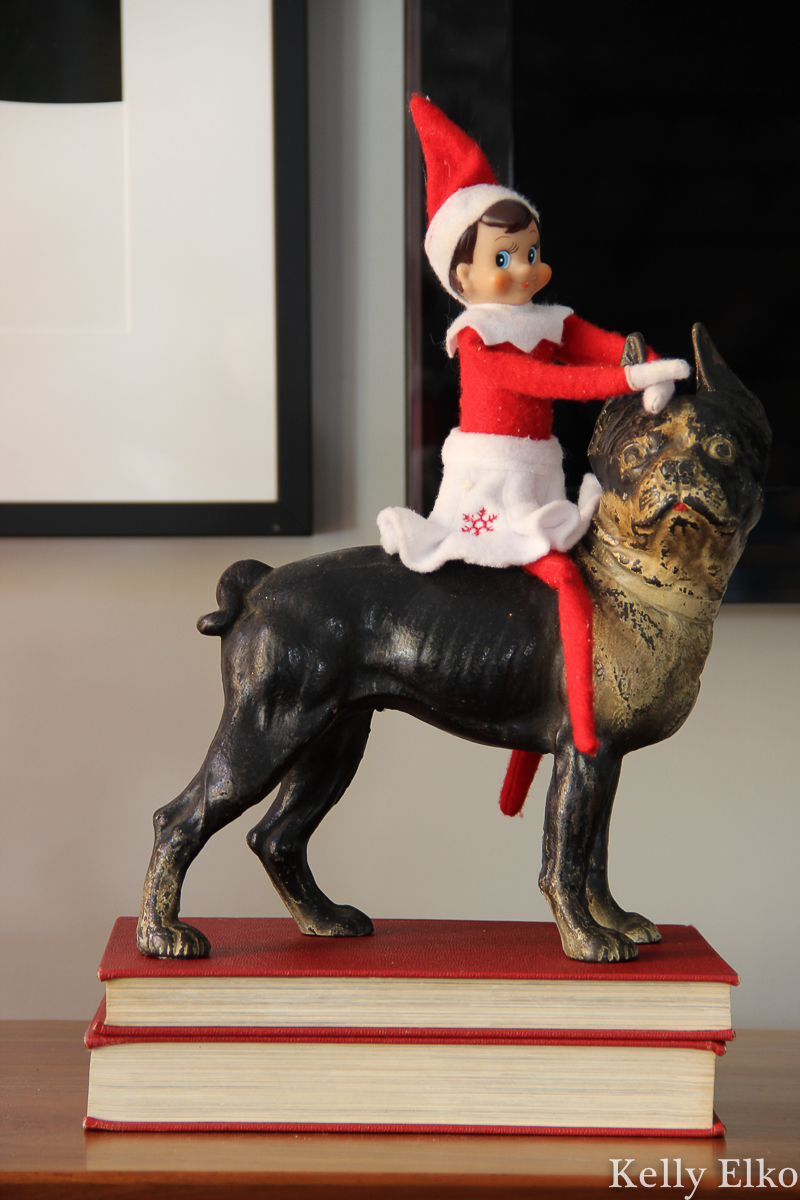 Elf on the Shelf on a Dog! kellyelko.com #elfonshelf #elfonashelf #vintagechristmas #antiquechristmas #bostonterrier #antiquedoorstop