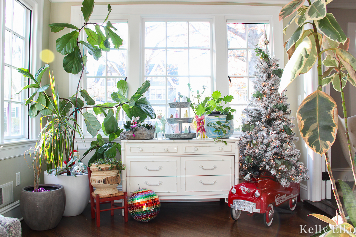Beautiful plant filled sunroom with a vintage pedal car holding a Christmas tree kellyelko.com #christmasdecor #christmashometour #vintagechristmas #retrochristmas #pedalcar #vintagetoys #farmhousechristmas #fiddleleaffig #plantlady #sunroom