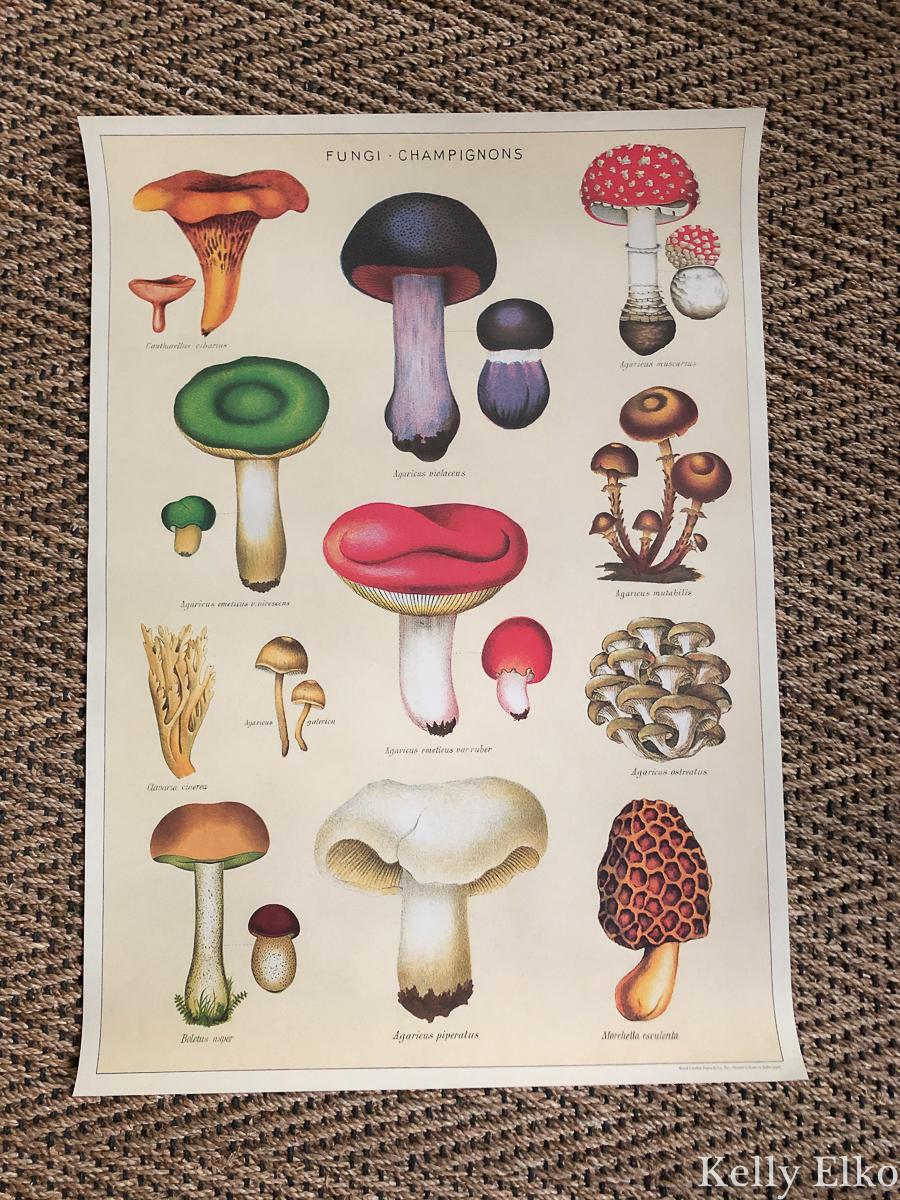 I love this mushroom gift wrap kellyelko.com #mushroom #mushrooms #giftwrap #diycrafts #christmascrafts