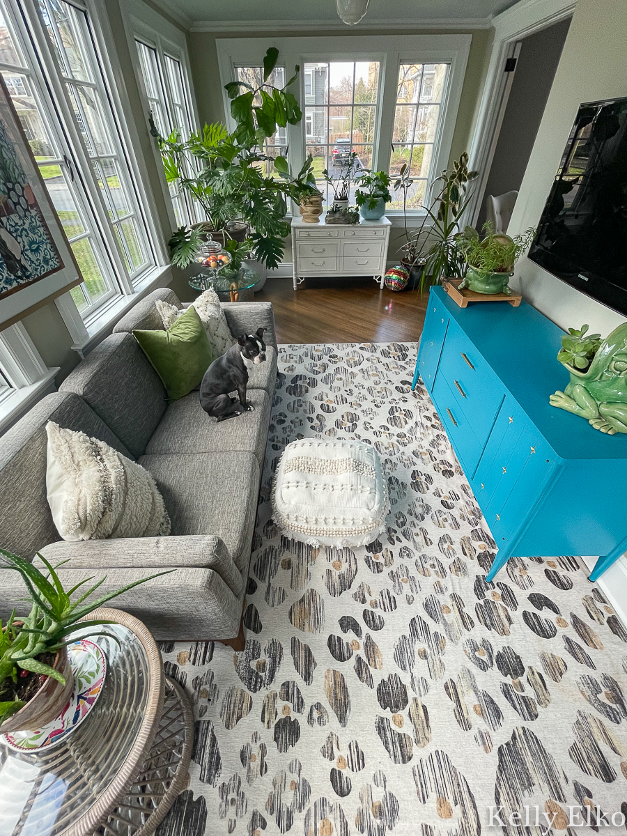 Love this leopard Ruggable rug in this plant filled sunroom kellyelko.com