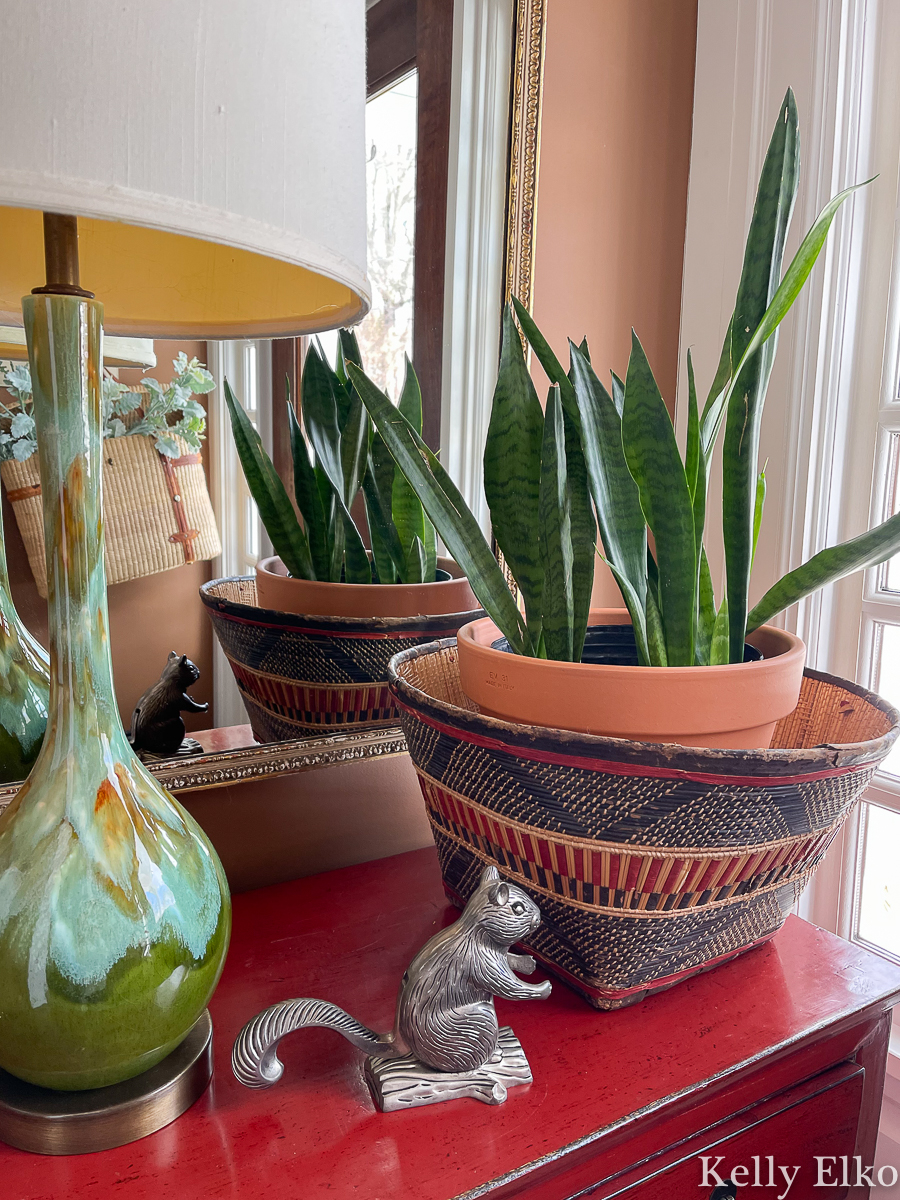 Eclectic vintage decor and a snake plant in a basket kellyelko.com