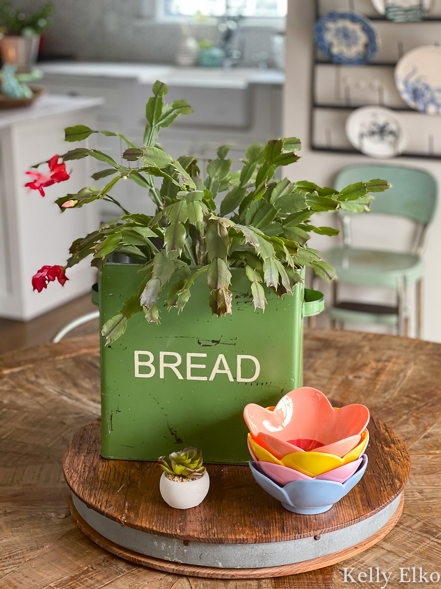 Love this vintage bread box used as a planter kellyelko.com