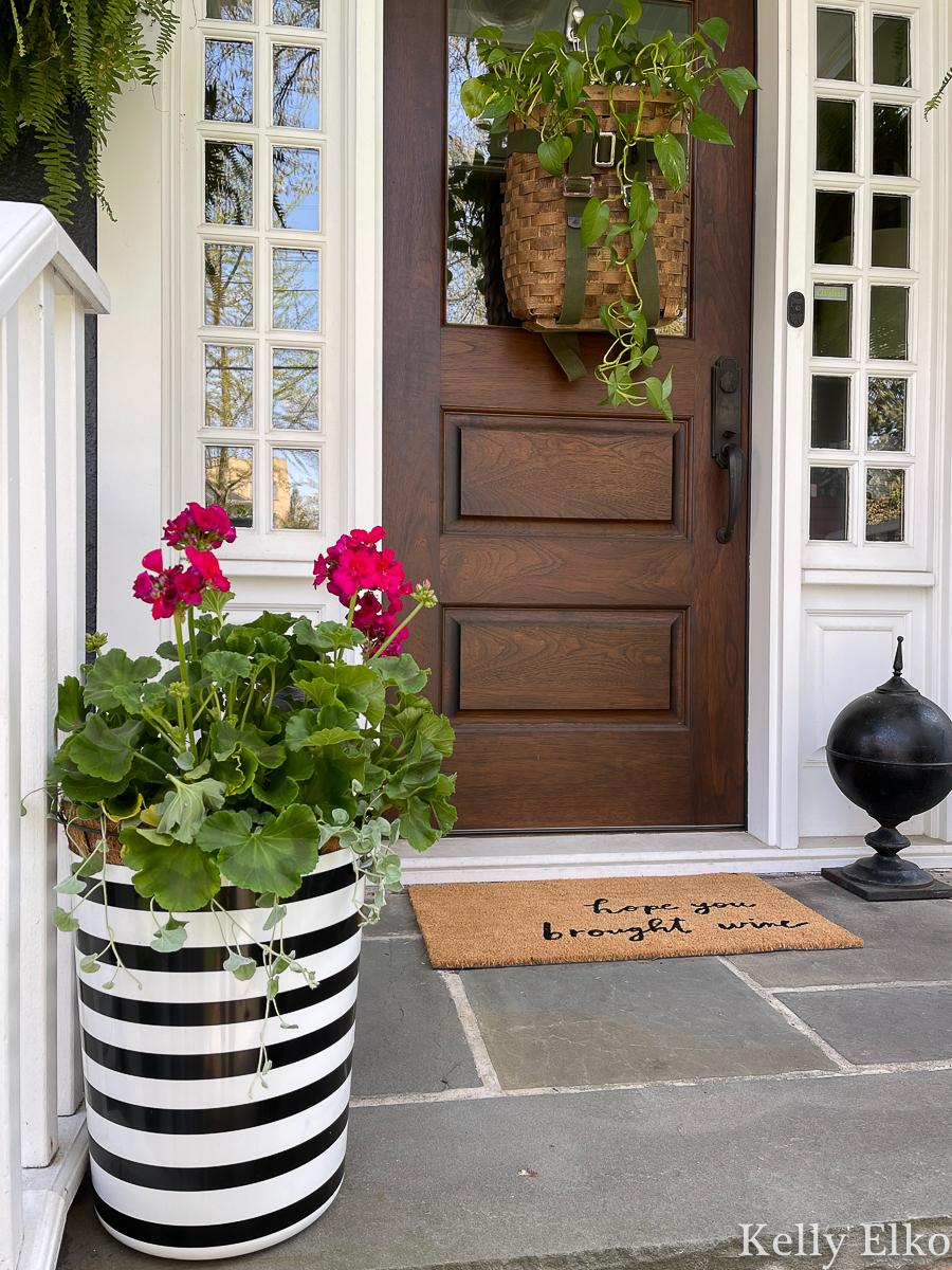 Love this graphic black and white planter filled with pink geraniums kellyelko.com #planters #planter #geraniums #porch #vintagedecor