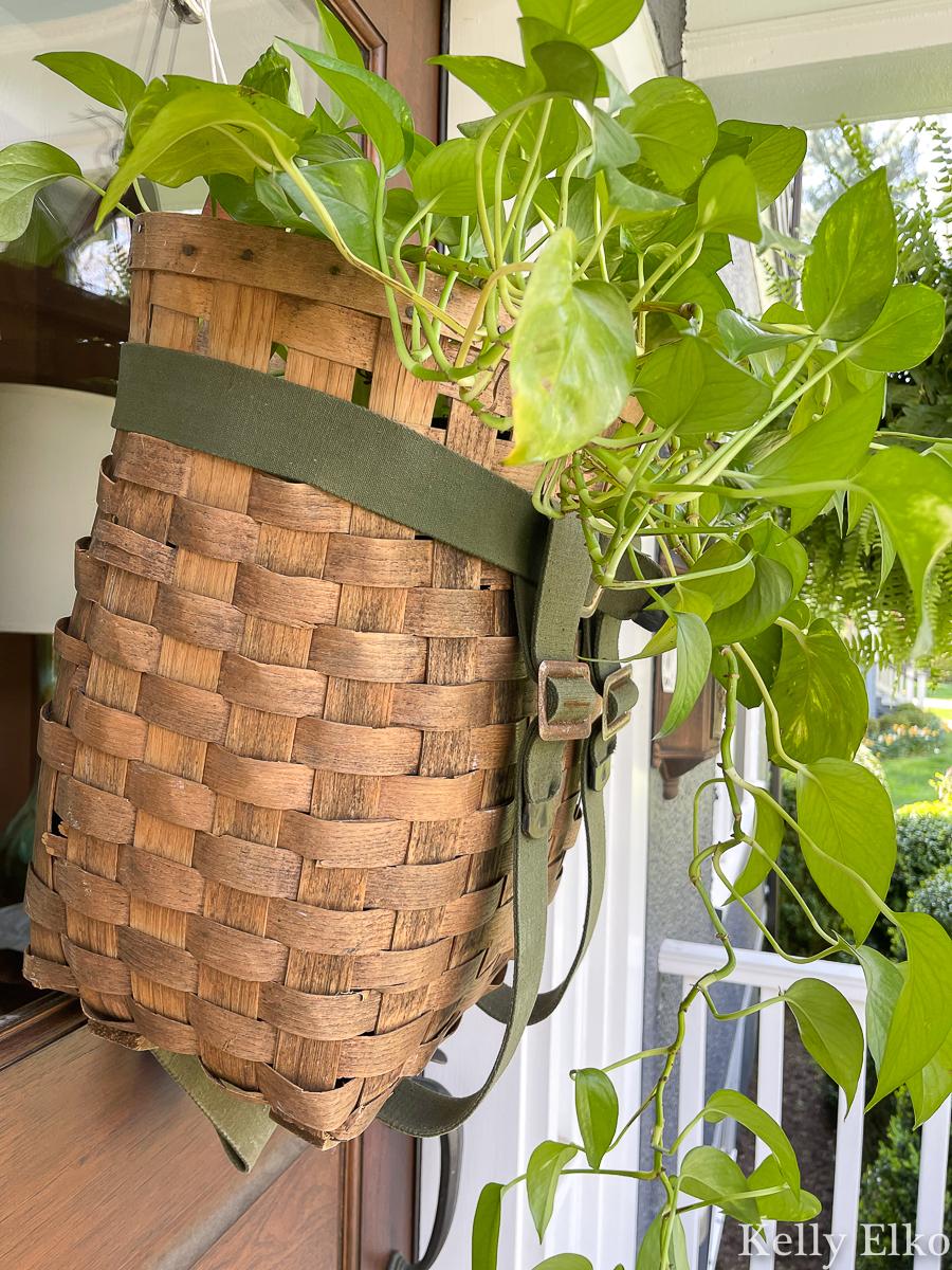 Vintage Adirondack basket turned front door wreath with a pothos plant kellyelko.com #planter #pothos #farmhousedecor #vintagedecor