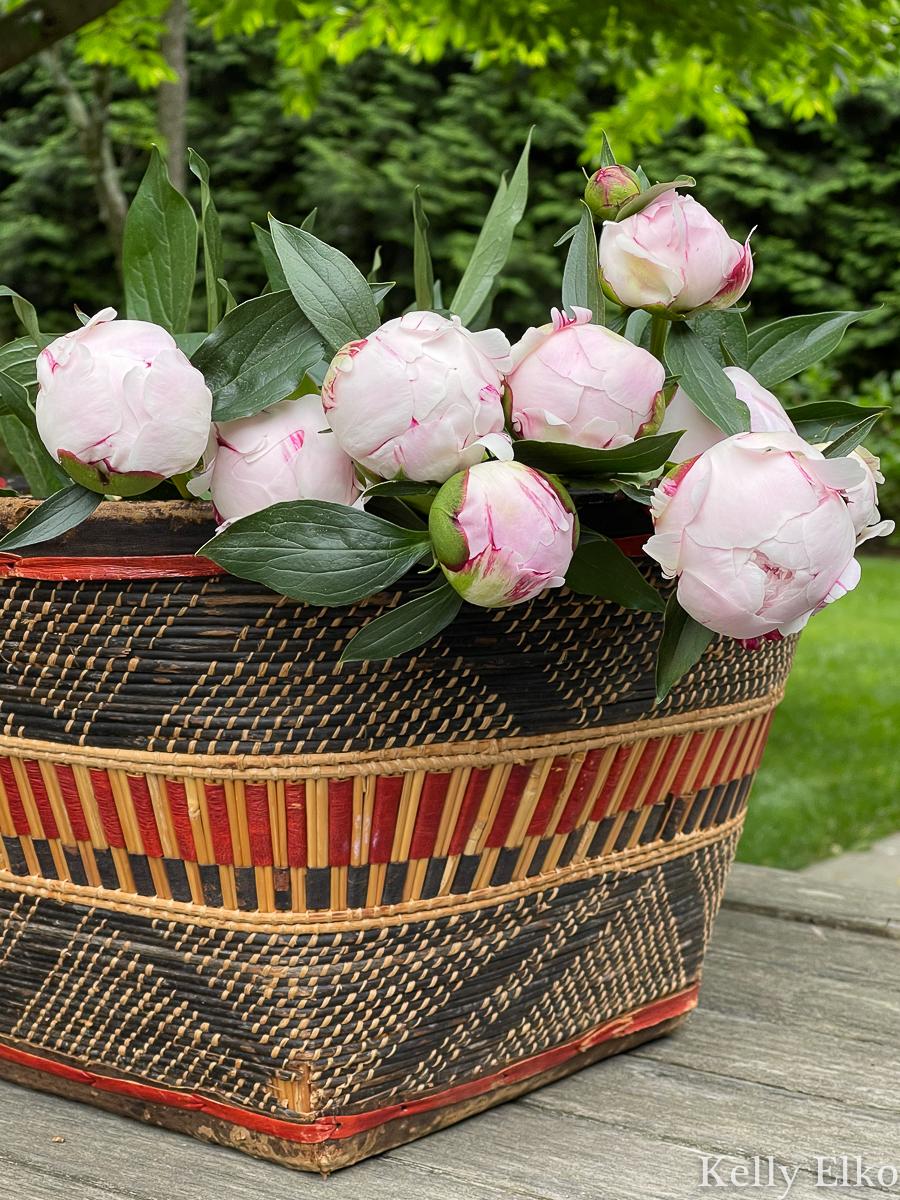 Gorgeous freshly cut peony flowers in a basket kellyelko.com
