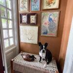 Vintage Birds Gallery Wall kellyelko.com